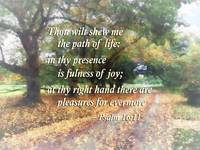 Psalm 16:11 Thou wilt shew me the path