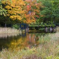 Autumn Day in Bridgton Art Prints & Posters by Cheryl Rau