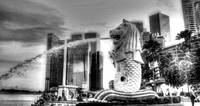 Merlion Black/white - City Singapore 2013