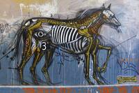 Horse, Hosier Lane, Melbourne