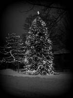Christmas without color