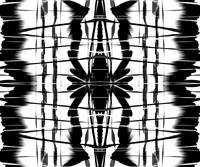 Black and White Abstract II