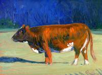 Morning Sun Warmth (cow painting)