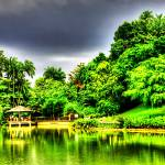 """Botanic Garden Central Lake, Singapore"" by sghomedeco"