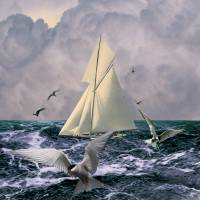 Sailing with the Terns by I.M. Spadecaller