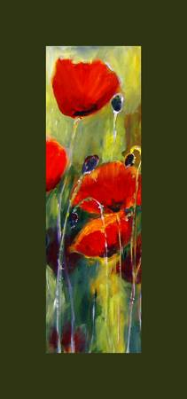Graceful poppies