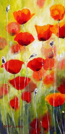 Delicate Poppies