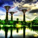 """Garden by the Bay - City Singapore 2013"" by sghomedeco"