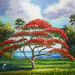 """Royal Poinciana Tree"" by mazz"
