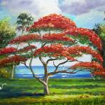 """Red Royal Poinciana Tree"" by mazz"