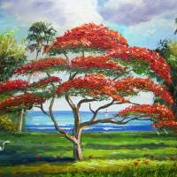 Red Royal Poinciana Tree Art Prints & Posters by Mazz Original Paintings