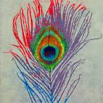 """""""Peacock Feather"""" by creese"""