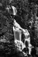 Whitewater Falls - Black and White