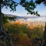 """""""Misty Morning - Cuyahoga Valley"""" by mindseyecreative"""
