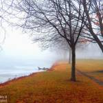 """Foggy Footpath"" by maureenmarieltd"
