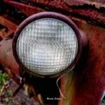 """Eye of the tractor"" by BrendaSalyersArt"