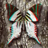 3D Anaglyph- Giant Swordtail Butterfly