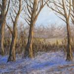 """""""melting snow and sleeping trees"""" by Matthew_Hannum"""