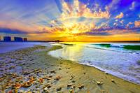 Sun Rays Sunset Beach Art Print Shells Landscape