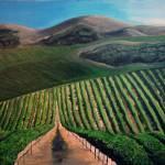 """Fresh Air Wine"" by 1RachelVerdi1"