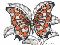 Curls#2 - Butterfly In Flight(Coral)