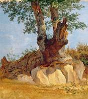 A Tree in Campagna, 1822 23