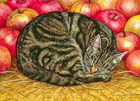 Left-Hand Apple-Cat, 1995