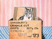 Crinkle Cut Chips