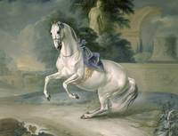 The White Stallion 'Leal' en levade, 1721