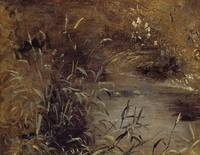 Rushes by a Pool, c.1821
