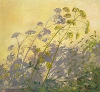 Lovage, Clematis and Shadows, 1999