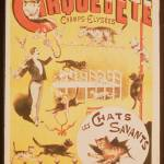 """Poster advertising the Cirque d"