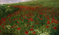 The Poppy Field, 1896