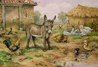Donkey and Farmyard Fowl