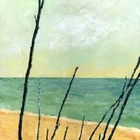 Branches on the Beach
