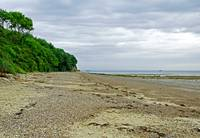 St Helens Beach, near Priory Bay (24590-RDA)