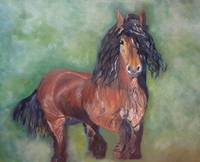 Year of the Horse/Gypsy Vanner