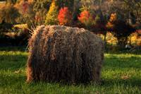 A Lone Hay Bale smaller