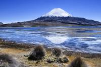 Volcan Parinacota and Lake Chungara, Parque Nacion