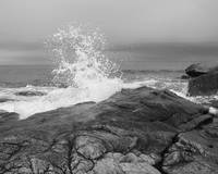 Cape Ann Crashing Wave