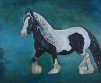Gypsy Vanner Black and White/Year of the Horse