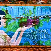 Galena On the Wall Art Prints & Posters by Tom Carroll