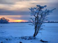 irish_winter