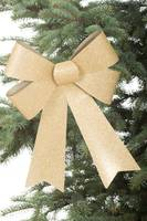 One gold bow on a christmas tree.