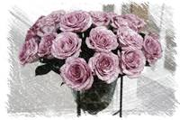 Romantic Mauve Roses - Digital Art
