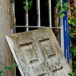"""""""P14-07RA Door Peeking In"""" by raBHA2014"""