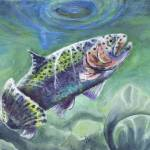 """""""The rainbow trout"""" by phils-art"""