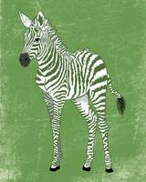 Baby Zebra in Green