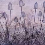 """Wildflower Silhouettes Purple"" by CoraNiele"