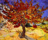 Vincent Van Gogh Mulberry Tree Painting